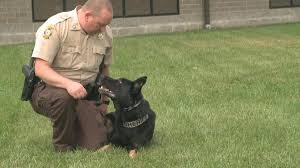 Hartsburg Pumpkin Festival 2013 Dates by Mid Missouri Officers Get K9 Training Certification