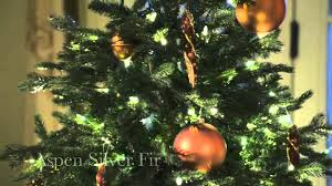 Balsam Christmas Trees by Close Up View Of Balsam Hill Artificial Christmas Trees Youtube