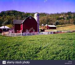 Wisconsin Dairy Farm With Red Barn, Tall Storage Silo And Green ... Holstein Dairy Cattle In A Green Field With Red Barn Stock Campground Home 1201 Best Barns Images On Pinterest Country Haing At The Big Aslrapp I Lived A Dairy Farm When Was Girl And Raised Calves Ihocalendar Ihocalendarcom Showcases Photos From Wisconsin Summer Photo 37409353 Shutterstock Herd Of Cows In Pasture With Large Red Family Farms Maker Puts Local Farmers First Pole Barn Sweet