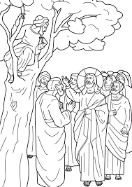 Jesus And Zacchaeus Coloring Pages In A Tree