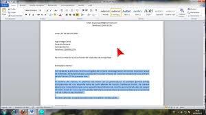 Carta De Organización Del Ejemplo Del Vector Del Negocio De Los