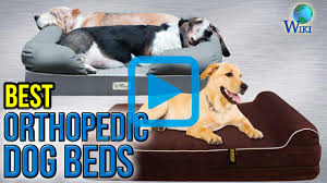 top 10 orthopedic dog beds of 2017 video review