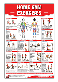 Home Gym Exercises Laminated Poster Chart Home Gym Chart Home