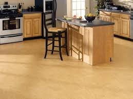 Kitchen Makeovers Classic Floor Tile Wood Flooring Design Ideas Light Colored Floors