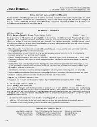 Create A Resume Website Unique Online Builder New Awesome Best Maker