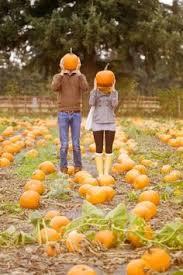 Pumpkin Picking In Waterbury Ct by Pumpkin Patch Sign