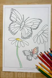 Summer Colouring Pages For Kids Butterflies And Flowers Free Printable