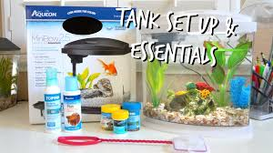Spongebob Fish Tank Decorations by How To Set Up A Betta Fish Tank Essentials Youtube