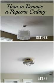 Remove Popcorn Ceilings Dry by Turtles And Tails Removing A Popcorn Ceiling