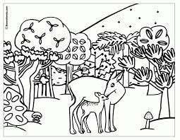 Free Coloring Pages Of Woodland Forest Animals