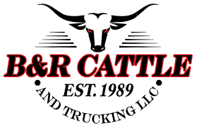 B&R Cattle And Trucking, LLC. Hshot Trucking Pros Cons Of The Smalltruck Niche Livestock Haulers May Receive Another Extension For Eld Rules Producers And Feedlots Are Facing A Trucker Shortage Mc Bdouble Transport Driver Jobs Australia Fleet Says It Acted Within Law In Denying Job To With Experienced Truck Fmcsa Clarifies Guidance Horse Haulers Topics Senate Passes Bill Exempting Livestock From Hinde Exports Livestock Plants Goods Ireland Uk Italy Cattle Driving Best Image Kusaboshicom Thomas Hauling Home Facebook