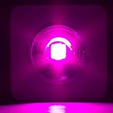 1 COB x 200 Watt Pegasus series Integrated LED