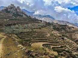 Yemen Coffee On A Mountainside Sprudge
