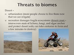 Earth Floor Biomes Desert by Chapter 6 Terrestrial Biomes Ppt Online Download
