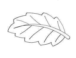 Leaf Coloring Page Pages For Leaves Tryonshorts Drawing