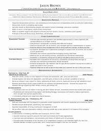 Executive Level Resume Samples Restaurant Manager Sample Beautiful Consulting