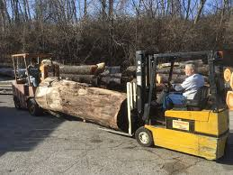 How Much Is Your Log Worth? | Woodworking Network Calamo How To Get A Tow Truck Fast When Stuck On I85 In Charlotte To Make Easy Money Gta 5 Security Truck Gruppe6 Method Whats The Best Way Take Payment For My Used Car News Carscom Apps That Earn You Money Business Insider 27 Making 2019 That You Ways Earn With Your By Delivering With Ubereats What Expect Much Might Ford Ranger Raptor Cost Us The Drive Very Euro Simulator 2 Mods Geforce Ets2 Make Fast Without Mods Or Cheats Euro Top 25 Easy Online Detailed Guide Huge Amounts Of Robbing Trucks