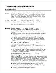 Resume Career Summary Sample Examples Of As Objective