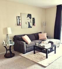 Apartment Decor Best Cute Ideas On Simple And Bathroom