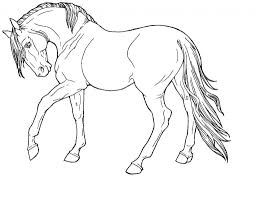 Realistic Horse Coloring Pages Running Mare Regarding Printable