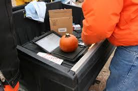Pumpkin Chunkin Contest Delaware chuckin pumpkins at punkin chunkin snapshots and sojourns