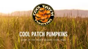 Silveyville Pumpkin Patch Dixon Ca by Outdoors Archives Your Town Monthly