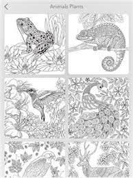 Garden Coloring Book Image