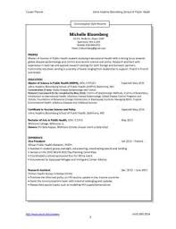 Hybrid Resume Sample Chronological Style
