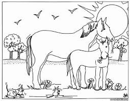 Beautiful Baby Horses Coloring Pages 73 In Print With