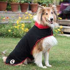 Low Shedding Dogs In India by Dog Clothes Online Buy Dog Clothes Dog Wear Online In India