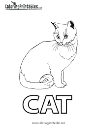 Cat Color Pages Printable Coloring Kitten Page Pictures For