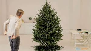 Target Christmas Tree 9ft by How To Put Lights On A Christmas Tree