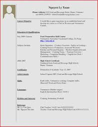 Resume Sample With No Experience Luxury Work Template Cv Year College