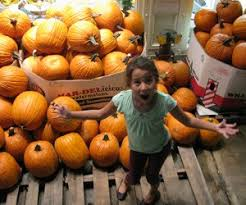 Best Pumpkin Apple Picking Long Island Ny by Fall Fun Guide For Nyc Kids Mommypoppins Things To Do In New