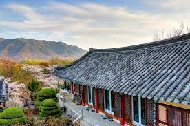 100 South Korean Houses 15 Reasons Why You Should Visit Korea At Least Once In