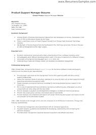 Resume Examples It Manager Sample For General Position