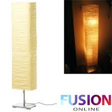 Regolit Floor Lamp Assembly by Regolit Floor Lamp Gallery Home Fixtures Decoration Ideas