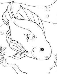 Coloring Page Of A Fish