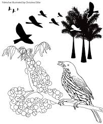 Image Gallery First Drafts Of Coloring Book Pages