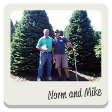 Pinery Bonita Pumpkin Patch by About Pinery Christmas Trees U2013 Pinery Christmas Trees