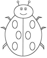 Incridible Bug Coloring Pages Ladybug Animals