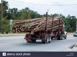 Pine Tree Logs Being Moved By Logging Trucks Stock Photo: 123598464 ... Having Too Much Fun To Stop For Paint 1961 Ford F100 And Car Towing Heavy Truck Repair Cambridge Oh 74043900 2009 Intertional Durastar 11 Ft Arbortech Forestry Body 60 Work Crane Removal Marquis Tree Trimmer Service Company Ma Used Boom Trucks For Sale Our Equipment Arbormax Diecast Vintage Pickup Christmas Chip Dump Trucks Pumpers Trim Their The Holidays Pumper Filetree Spade Truck Loveland Coloradojpg Wikimedia Commons The Armys Selfdriving Hit Highway Ppare Battle Wright Reaps Rewards From Long