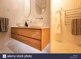 luxus inländischen badezimmer dusche und waschtisch mit