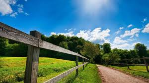 Summer Country Road Background