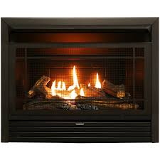 Duluth Forge Dual Fuel Ventless Fireplace Insert 26000 BTU