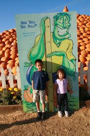 Morgan Hill California Pumpkin Patch by The Kee Family