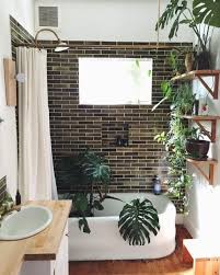 Small Plants For The Bathroom by Best 25 Jungle Bathroom Ideas On Pinterest Bathroom Plants