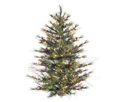 Christmas Tree Types Canada by Twinkling Christmas Tree Lights Canada Best Images Collections