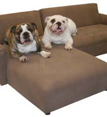 Balmoral White Faux Leather Dog Sofa Bed Extra Dog Modern