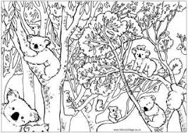 Australia Colouring Pages